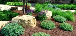 Minnesota Landscape Planting Services from Heins Nursery.