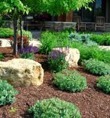 Minnesota Landscape Planting Services from Heins Nursery.
